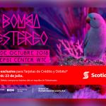 img-entrada-musica-bombaestereo-2018