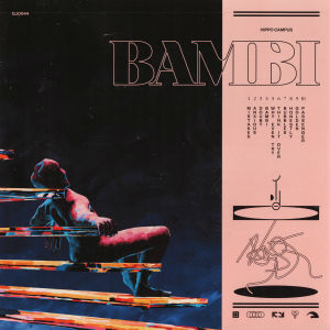 bambi_hippo_campus_album