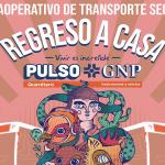 img-entrada-musica-pulsognp-rutas-2019